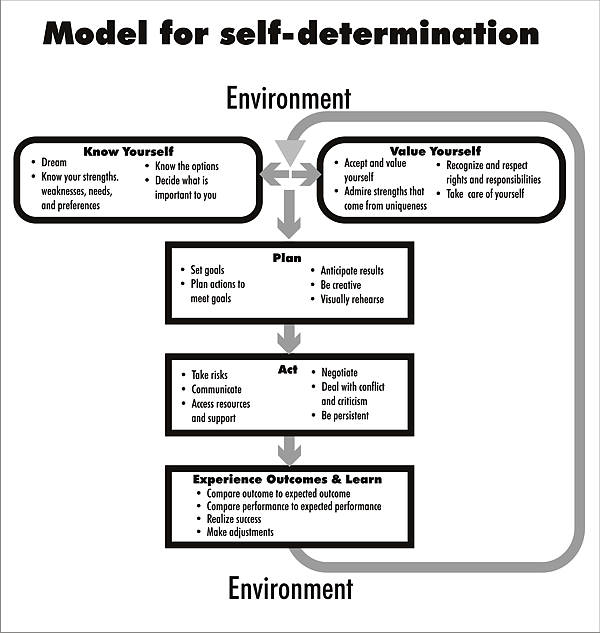 thesis self determination learning disabilities